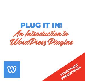 plug-it-in-product-logo